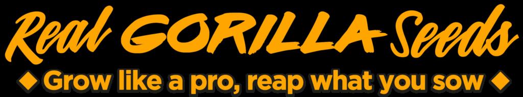 rgs-logo-orange